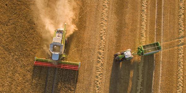 LOSAT - Industrias - Agrícola - Agricultura